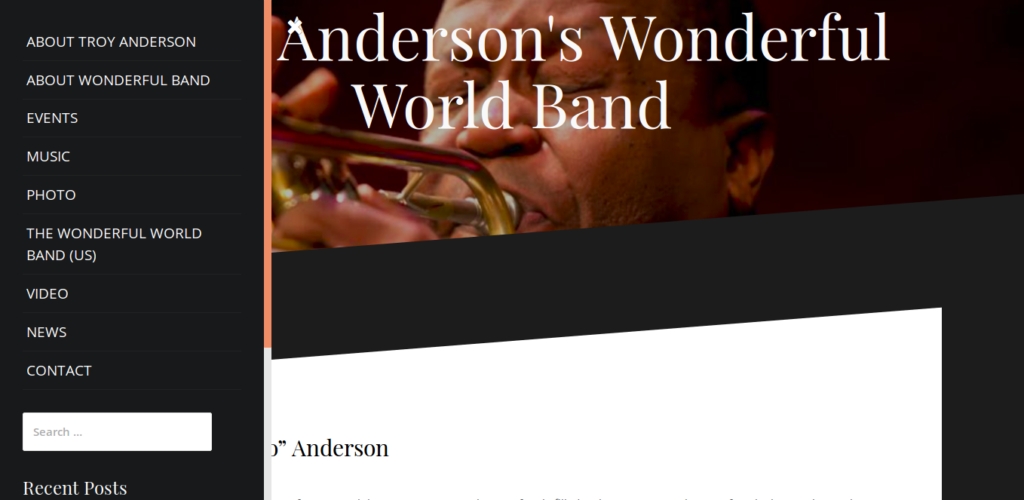 Troy Anderson's Wonderful World Band